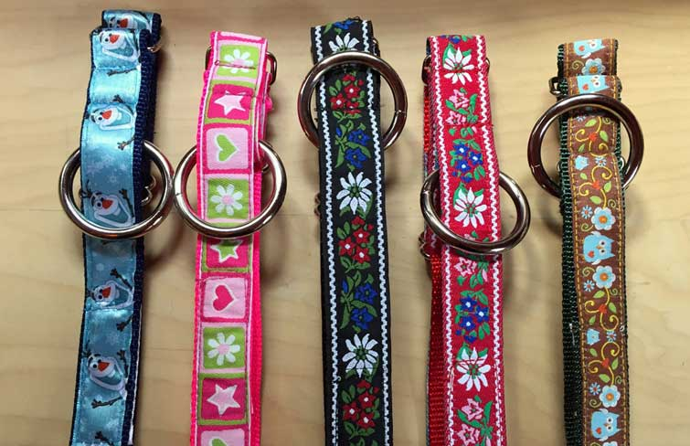 Multiple options for collars and leashes